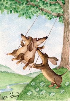 Doxie swingers!