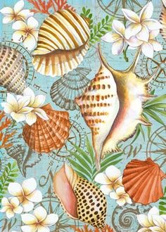 Shells And Plumeria ~ by Elena Vladykina Seaside Shops, Illustration Art, Illustrations, Nautical Art, Sea Art, Colouring Techniques, Beach Signs, Decoupage Paper, Beach Crafts
