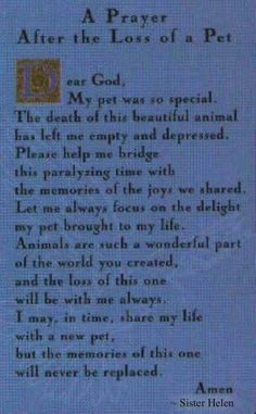 Loss Of A Dog Prayer Prayer Request for Karen E, and the loss of her beloved dog Tripp . Animal Quotes, Dog Quotes, Animal Poems, A Dogs Prayer, Prayer Prayer, Faith Prayer, I Love Dogs, Puppy Love, Der Boxer