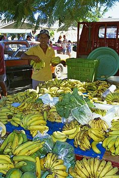 Bananas for sale, local market, Avarua, Rarotonga, Cook Islands, Polynesia…