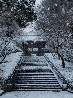 雪の北鎌倉~円覚寺・東慶寺・浄智寺 olympus