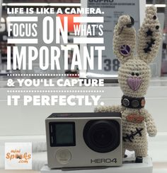 Life is like a camera. Focus on what's important & you'll capture it perfectly. Happy Wishes, Wish Quotes, Life Is Like, Rabbit, Crochet Hats, Mini, Amigurumi, Bunny, Knitting Hats
