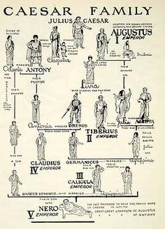 Julius Caesar laid the foundations for the great Roman empire History of Roman military medicine Roman History, European History, World History, Art History, British History, History Books, American History, Ancient Rome, Ancient Greece