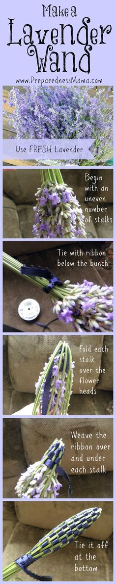 "5 Useful {and Fun} Things to Do With Your Lavender Harvest | Preparedness Mama: ""If you have to pick one herb for your garden, Lavender is it."" 