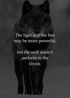 45 Power of words quotes that can be beneficial or hurtful. Here are the best words quotes that will show you their power, which can be help. Motivacional Quotes, Lion Quotes, Animal Quotes, Wisdom Quotes, True Quotes, Words Quotes, Bossy Quotes, Inspiring Quotes About Life, Inspirational Quotes