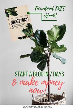 Free Image on Pixabay - Banana Tree, Copy Space, Leaves Minimalist Blogs, Leaf Prints, Wall Art Prints, Fiddle Leaf Fig, Bedroom Plants, Tropical Leaves, Houseplants, Indoor Plants, Potted Plants