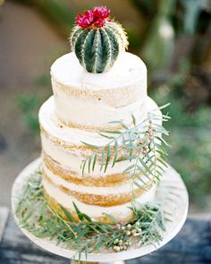 Cactus Wedding Ideas | Martha Stewart Weddings - This two-tiered naked cake was decorated with the perfect finishing touch: A mini flowering cactus.
