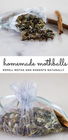 Homemade Mothballs are a great option to prevent moths and moth larvae. Doterra, Natural Cleaning Products, Natural Products, Diy Products, Homemade Bug Spray, Essential Oils Cleaning, How To Dry Rosemary, Peppermint Leaves, Drying Herbs