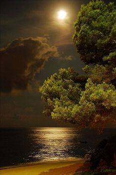 Beautiful Nature Wallpaper, Beautiful Moon, Beautiful Landscapes, Beautiful World, Beautiful Places, Peaceful Places, Moonlight Photography, Moon Photography, Amazing Photography
