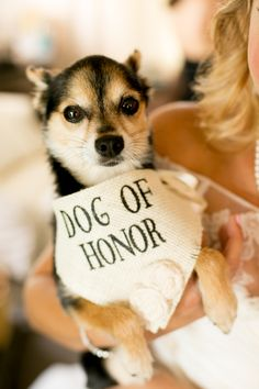 How adorable!! View the full wedding here…