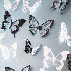 Black & White 3D Butterfly Wall Stickers