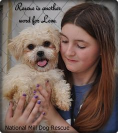 Rescue is another word for Love!  National Mill Dog Rescue - http://www.milldogrescue.org/