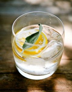 gin & tonic + lavender sage honey syrup