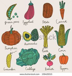 Tasty vegetables in vector set - green peas, eggplant, potato, carrot, pumpkin, avocado, leek, corn, cucumber, cabbage, radish, pepper. Vegetarian concept collection in cartoon style
