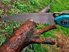 Die #Handsäge ist eines der Standardwerkzeuge im Bestand eines Handwerkers. Ihr #Sägeblatt ist in einen Rahmen aus Holz, Metall oder Kunststoff gespannt und wird mit der Hand bedient.    https://www.handwerker-versand.de/blog/Tipps-und-Tricks/das-a-und-o-der-handsaegen/