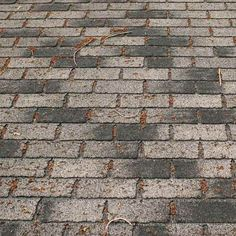 Those dark stains on your roof shingles?  Could be algae.  Here's how to remove it without damaging your roof. | Photo: ideabug/iStock | thisoldhouse.com