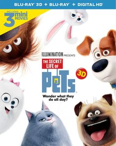 Secret Life of Pets BluRay DVD Givewaway: The Secret Life of Pets just released on Blu Ray DVD this week. We are excited to be giving away 5 copies of the new Blu-Ray DVD combo pack! Dvd Film, Family Movie Night, Family Movies, Pets Movie, Movie Tv, Hd Movies, Movie Blog, Dieter Hallervorden, The Secret