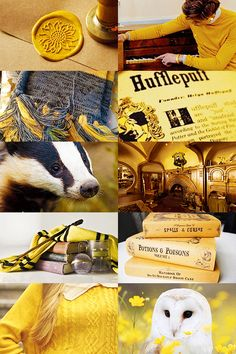 The Real Harry — totouchthefiretwice: Harry Potter Aesthetics:. Objet Harry Potter, Cute Harry Potter, Harry Potter Pictures, Harry Potter Fandom, Harry Potter Universal, Harry Potter Memes, Harry Potter Hogwarts, Harry Potter World, Potter Facts
