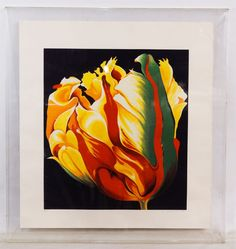 """Lot 303: Lowell Blair Nesbitt (American, 1933-1993) """"Parrot Tulip 1"""" Serigraph; 1980, pencil signed lower right, numbered 13/200, depicting a tulip on a black background, housed in a plexiglass case"""