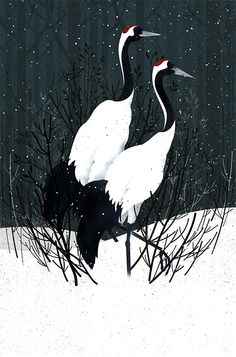 Japanese Cranes by Gelrev Ongbico