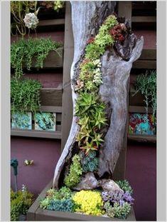 10+ Ideias DIY para Jardins Verticais