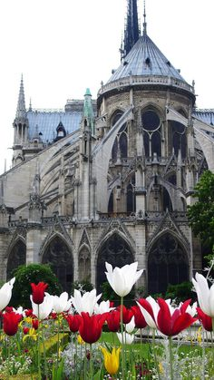 Notre Dame, Paris -- Are they tulips? They look like tulips. I love tulips. I love Notre Dame. If these aren't tulips, well, whatever they are, I love them too! Places Around The World, Oh The Places You'll Go, Places To Travel, Places To Visit, Around The Worlds, Wonderful Places, Great Places, Beautiful Places, Ville France