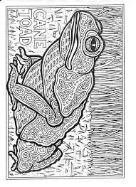 Aboriginal Colouring Pages
