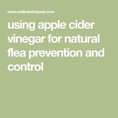 using apple cider vinegar for natural flea prevention and control