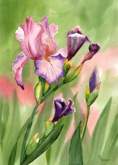 Colors of Spring by maryellengolden on Etsy, $30.00    I've changed the creative spirits board a bit to include things that inspire us to create, teach or even collect and admire art.  Please post your favorite inspirations...  This beautiful iris painting really inspires me and makes me want to keep painting my favorite of all spring flowers...the beautiful iris.