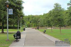 UCF Campus!