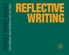 reflective practise writing and professional development