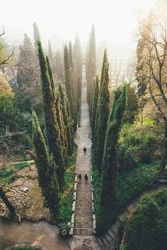 Guisti Gardens in Verona, Italy