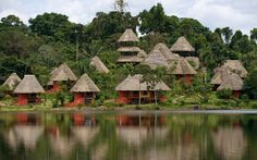 Bungalows's style hotel in the middle of Amazonian Forest!! :)  Parrots eating from hand