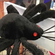 You decide if this Wet N Wild Cosmetics Halloween Spider attracts attention and sales or not. The offerings are clearly displayed but the who, how, & why. Wet N Wild Cosmetics, Halloween Spider, Insects, Retail, Sleeve, Retail Merchandising