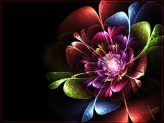 Rainbow Flower by ~The-Apparition