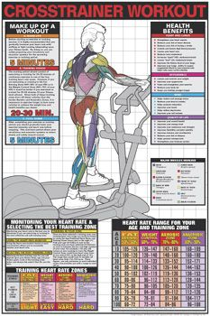CROSS TRAINER WORKOUT (Men's Elliptical Running Machine) Fitness Center Gym Wall Chart Poster - Fit