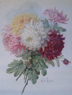 """Chrysanthemums"" - Paul de Longpre"