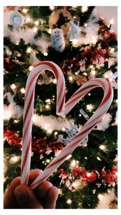 weihnachtdeko inspo dekorierter weihnachtsbaum hübsche hintergrundbilder handy kostenlos zwei zuckerstangen in herzform festliche dekoration