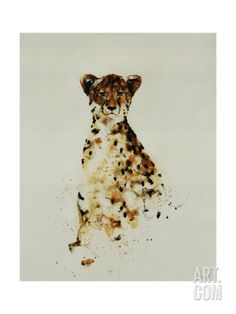 Cheetah Giclee Print by Sydney Edmunds at Art.com