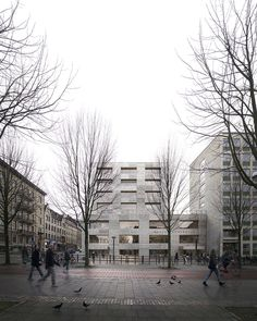 Johannes Norlander . School of Business, Economics and Law extension. Gothenburg (1)