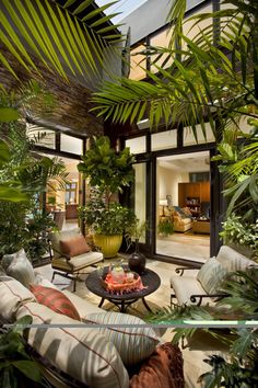 Tropical Outdoor Design with Plants