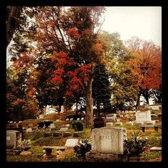 From my Instagram account: follow me to see more great pics like this one - shortielayne   This was taken at Mount Albion Cemetery in Albion NY
