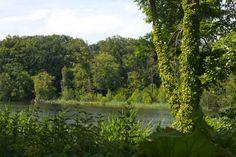 Großer Behnitzer See, Havelland