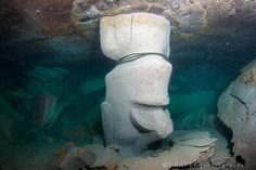 Rapa Nui Team Vows To Reform Botched Artificial Reef Site