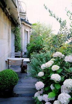Haie libre : faire une haie libre par Pierre-Alexandre Risser - Balcon et terrasse : 10 idées d'aménagement paysager