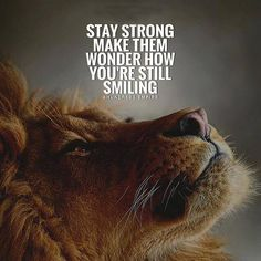 Have a terrific week high achievers and those who have big dreams! Good Quotes, Inspirational Quotes About Success, Badass Quotes, Amazing Quotes, Wisdom Quotes, True Quotes, Positive Quotes, Best Quotes, Motivational Quotes For Workplace
