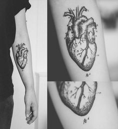 Vintage anatomical drawing of a heart. Tattoo via Tattoologist