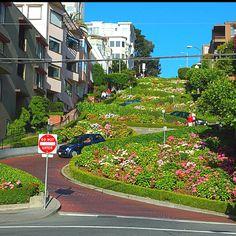San Francisco ~ miss the bay area!