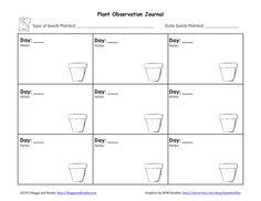 First grade gardeners books kindergarten and homeschool plant observation journalpdf google drive fandeluxe Gallery