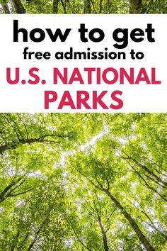 Plan family travel across the US. Find out how to get in free to National Parks and different ways to earn a free National Park Pass. National Park Pass, Badlands National Park, Shenandoah National Park, Us National Parks, Grand Teton National Park, Independence Park, Assateague Island National Seashore, Cumberland Gap, New England Travel